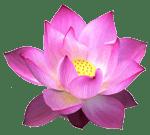 Makara Silk Logo